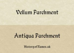 Vellum & Antiqua Parchment Paper